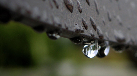 A GENTLE DROP OF RAIN